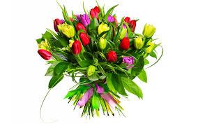 Bouquets/Ramos